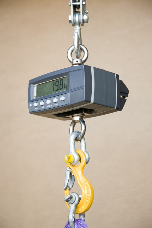 Rinstrum HS-150A 150kg x 50g Hanging Scale